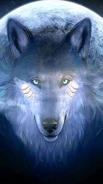 Wolf Wallpapers For PS3