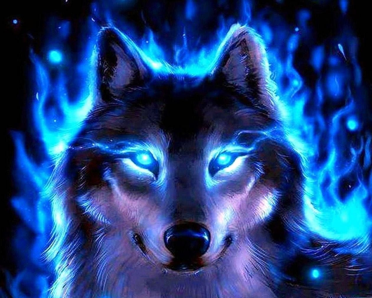 Free Cool Wallpapers Of Wolf Wolf Wallpapers Pro