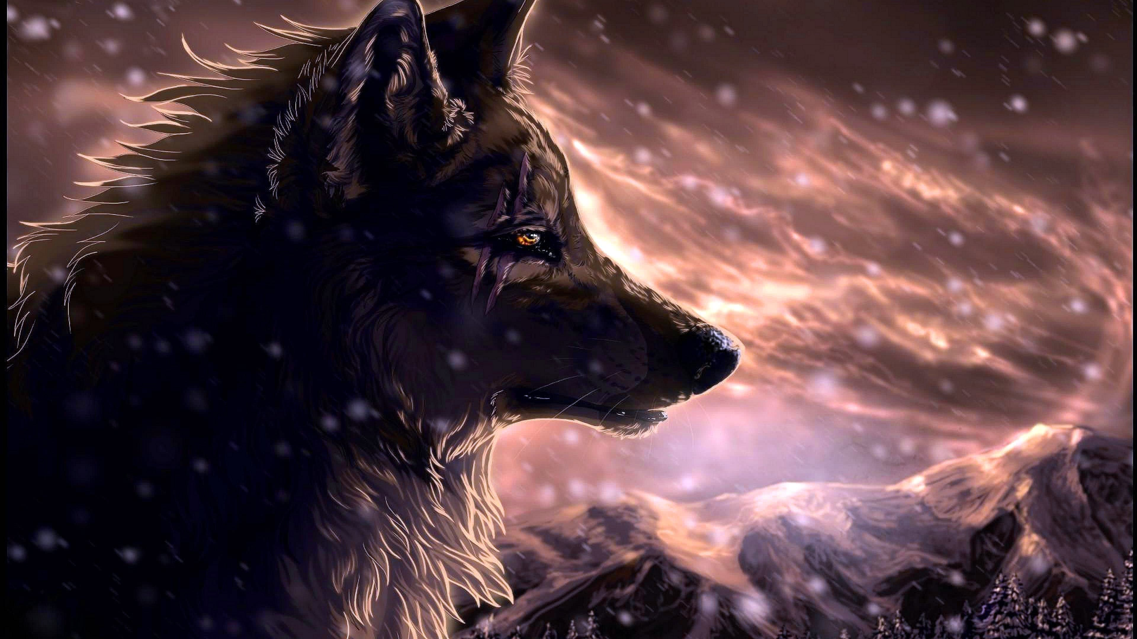 Cool Wolf Wallpapers 4K