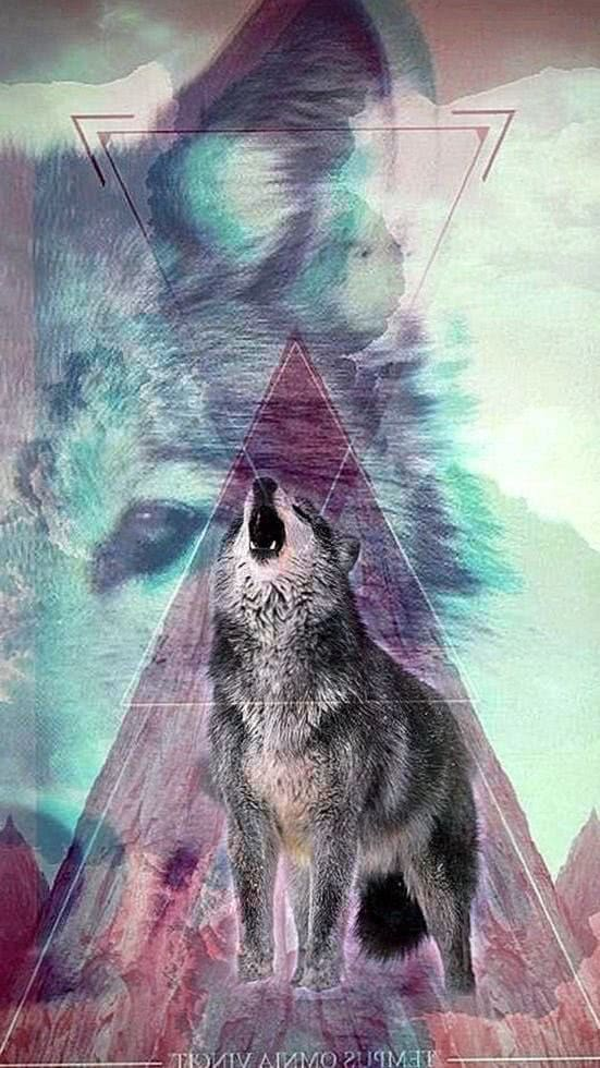 Cool Wolf Wallpaper iPhone