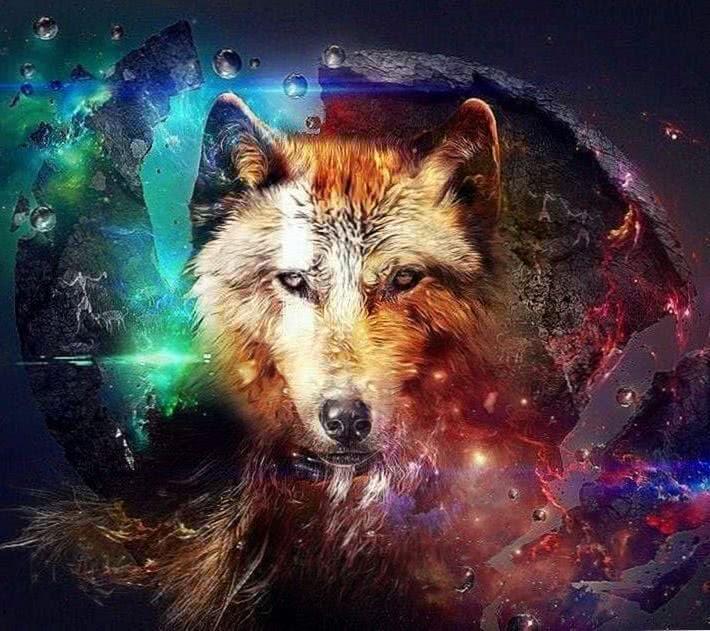 Wolf Wallpapers MacBook Air