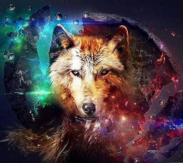Wolf Wallpaper Pro
