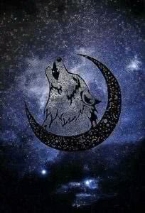 Crescent Moon Wallpapers Wolf