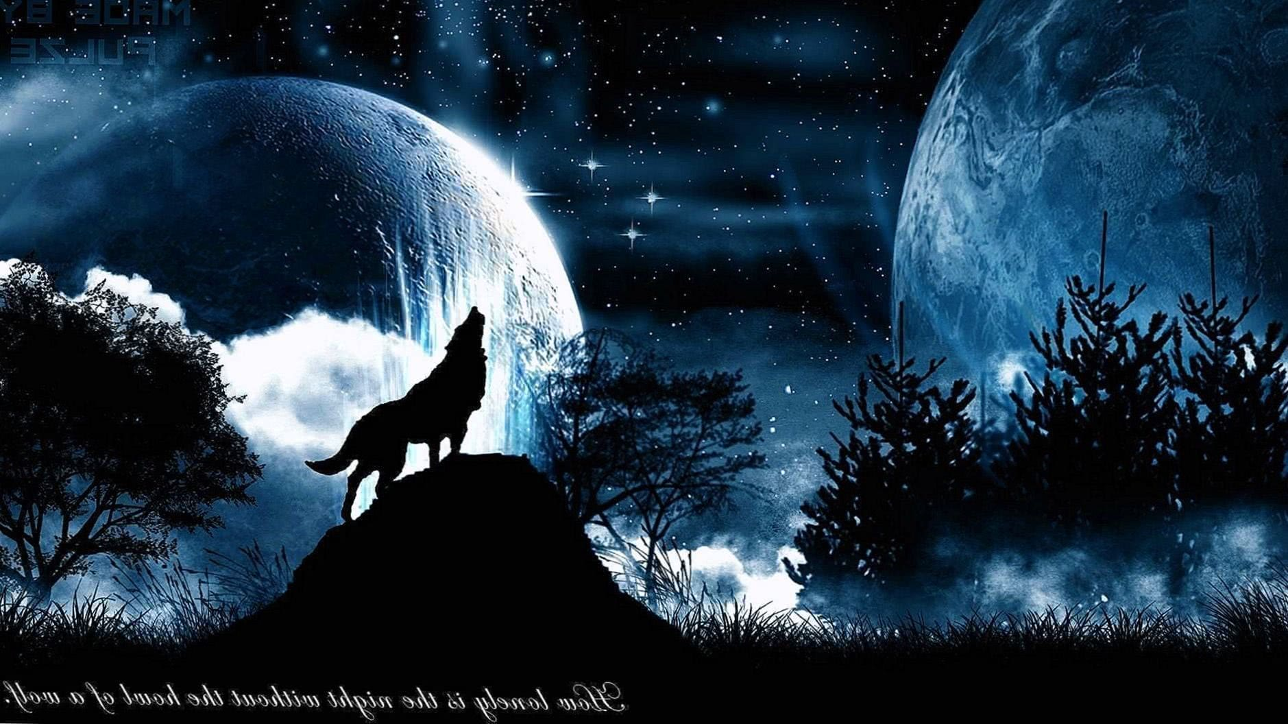 Free Wolf Dark 1920x1080 Wallpapers Wolf Wallpapers Pro