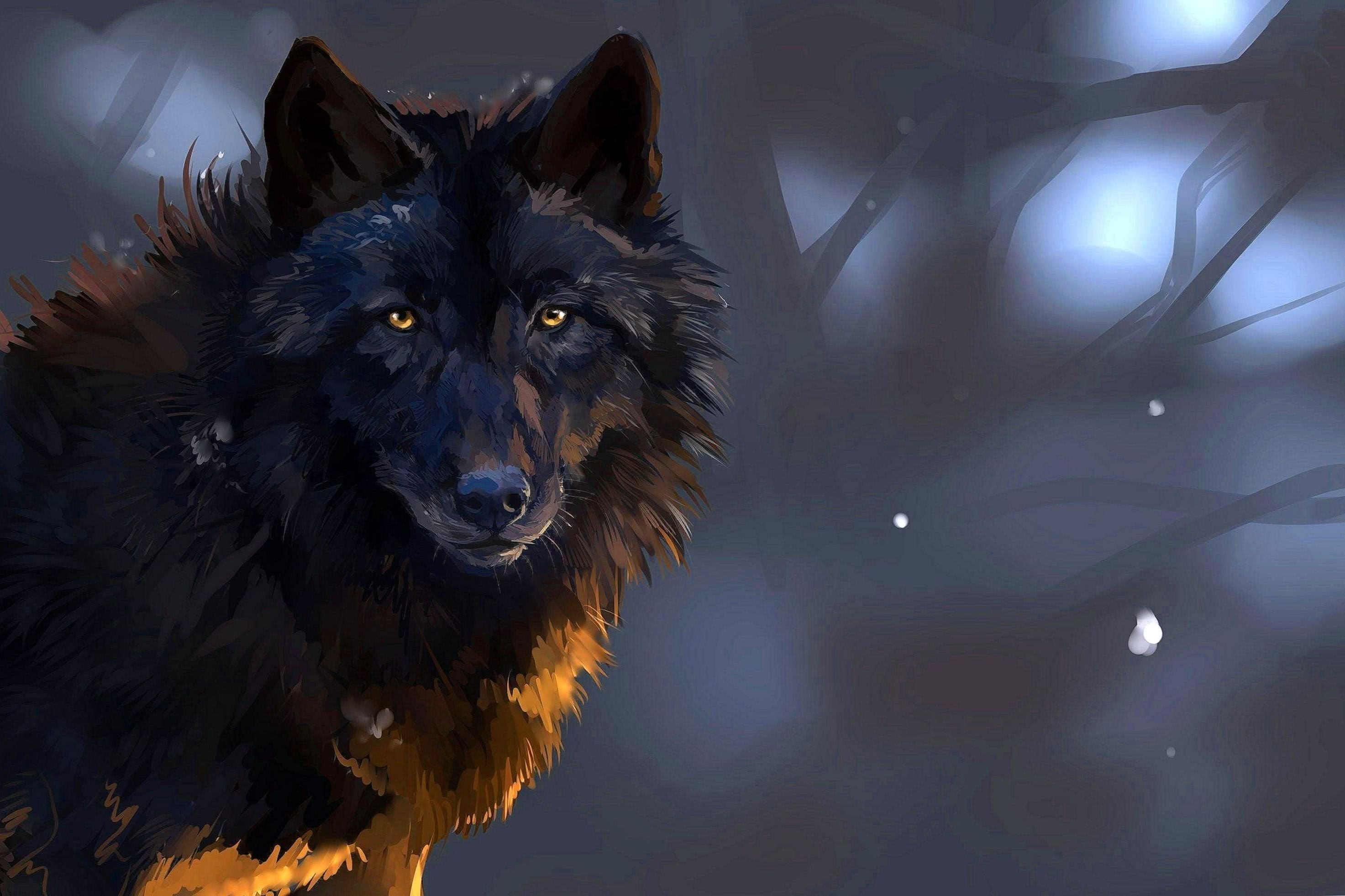 The Black Wolf Wallpaper