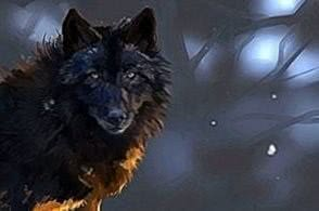 Dark Wolf Wallpapers HD