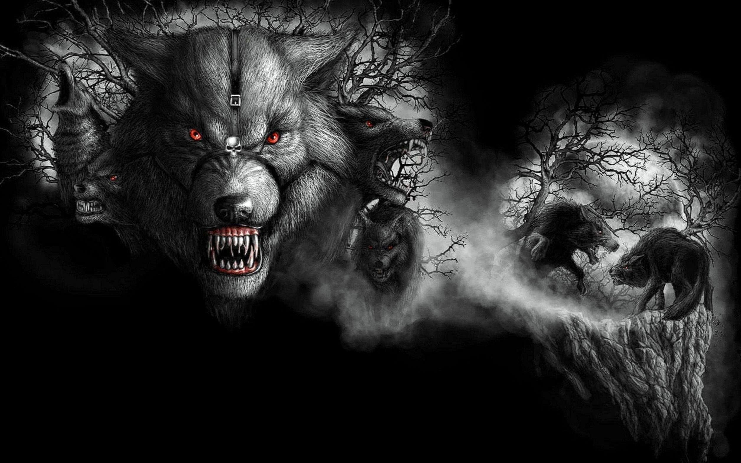 Dark Wolf Wallpaper HD