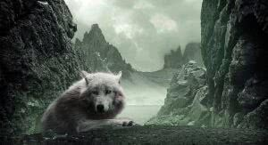 Wallpapers Cave Wolf