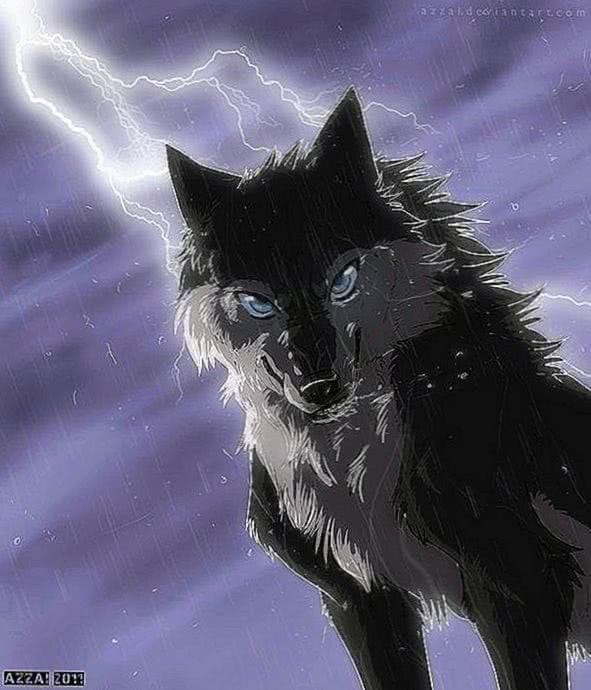 Anime Wolf Computer Wallpaper