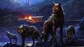 Deadly Wolf HD Wallpapers