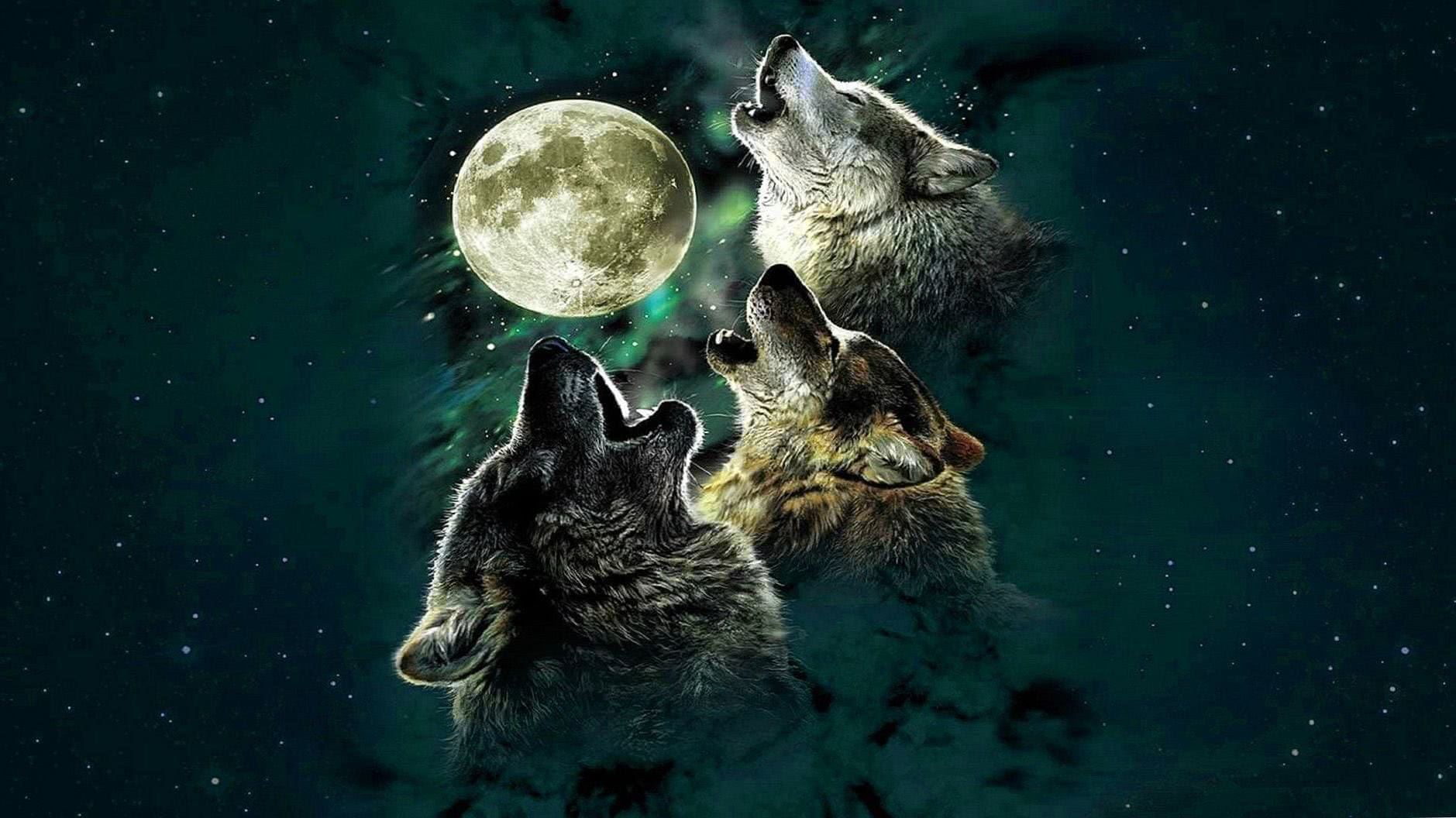 Wolf And Moon Wallpapers HD
