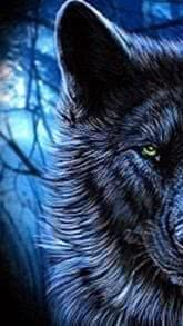 Wolf Wallpapers iPhone 7 Plus