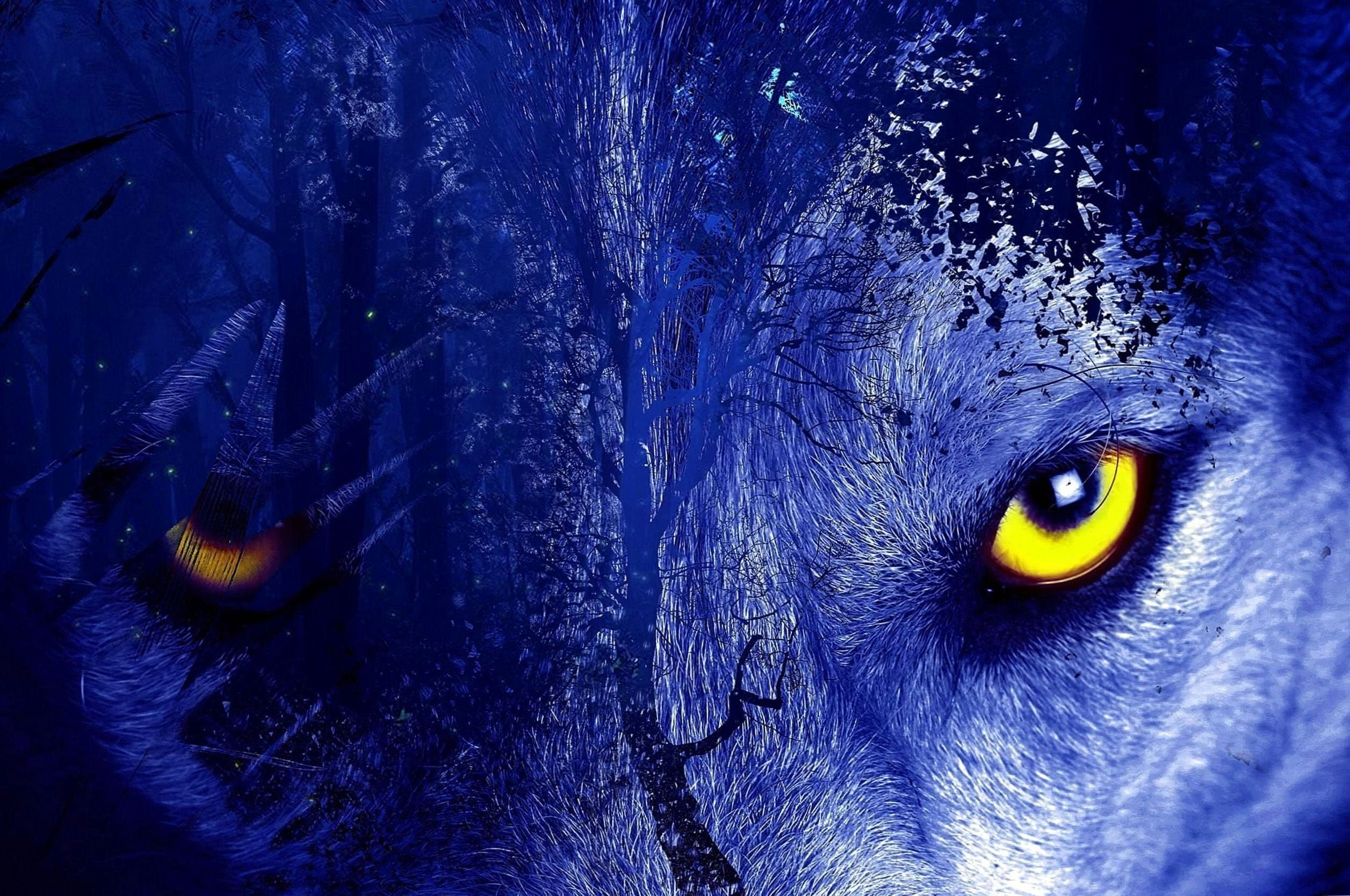 Wolf Wallpapers For Chromebook