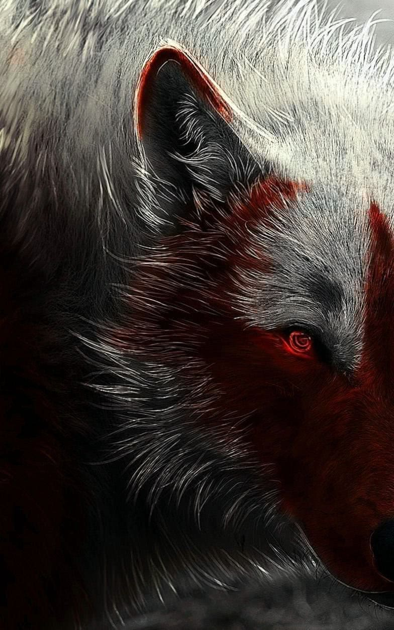 Wallpaper For Samsung Wolf