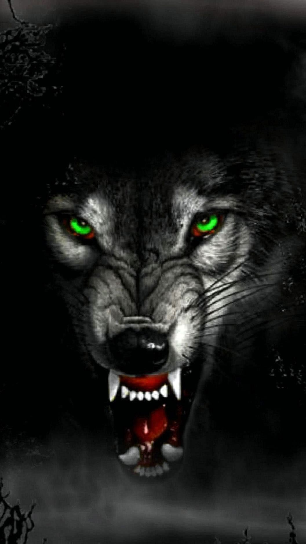 Angry Wolf HD Wallpaper For Mobile
