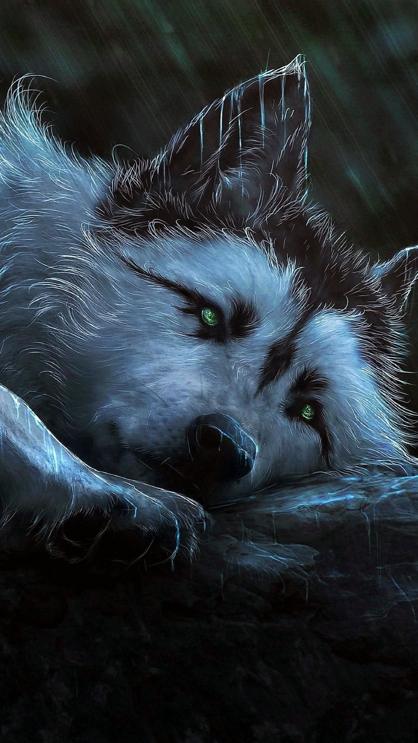Wolf Wallpaper For S6