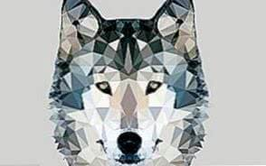 Wallpapers Polygonal Wolf