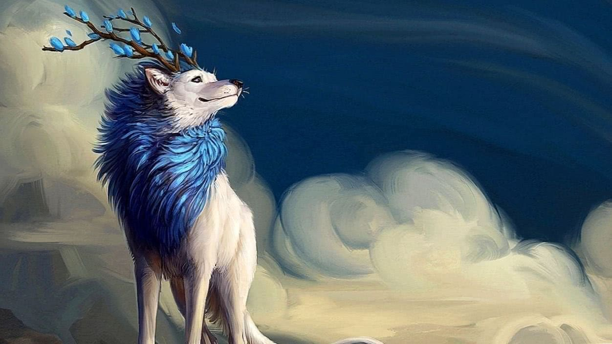 720p Wolf Wallpapers