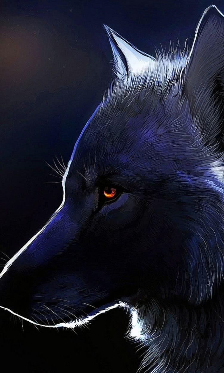 Cell Phone Wallpaper Wolf