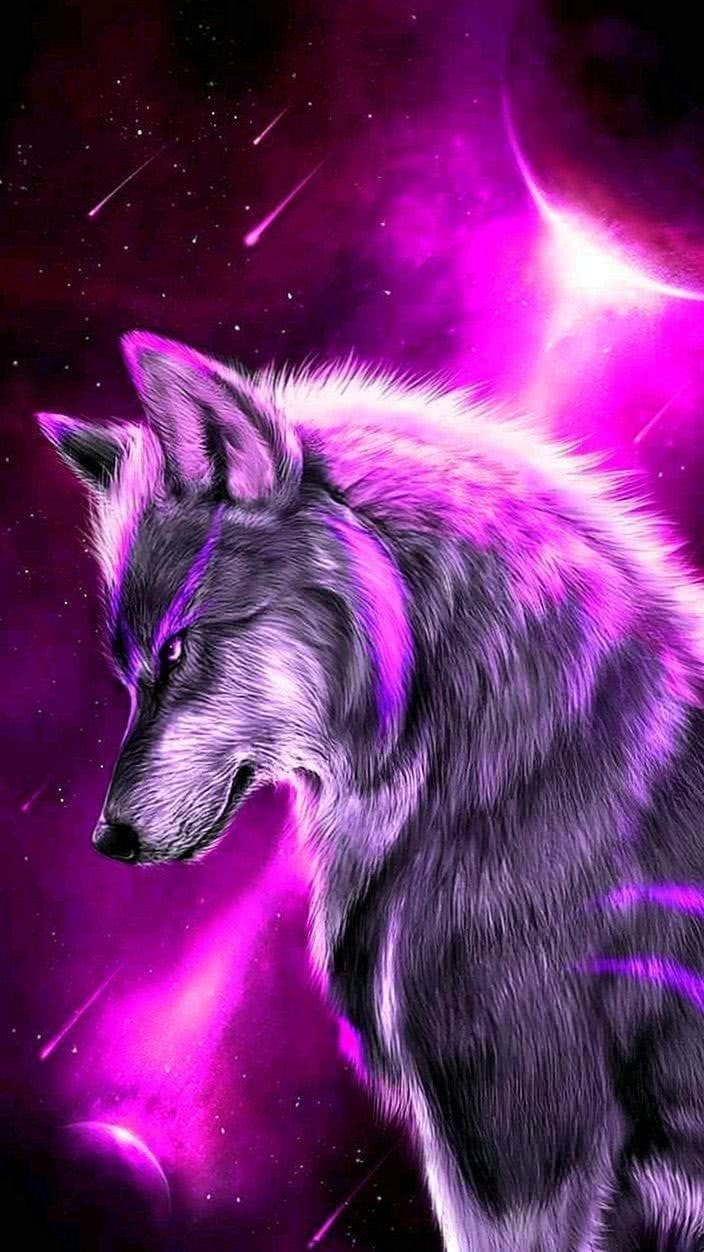 Galaxy Wolf Wallpapers Zedge