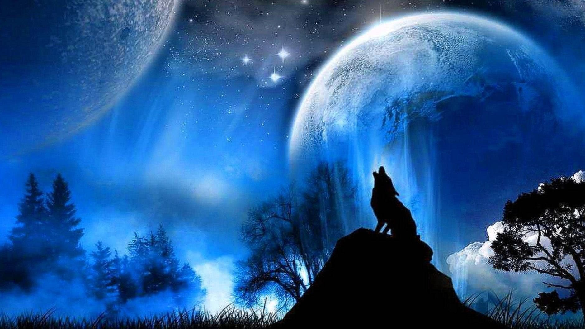 Epic Wolf Wallpaper HD