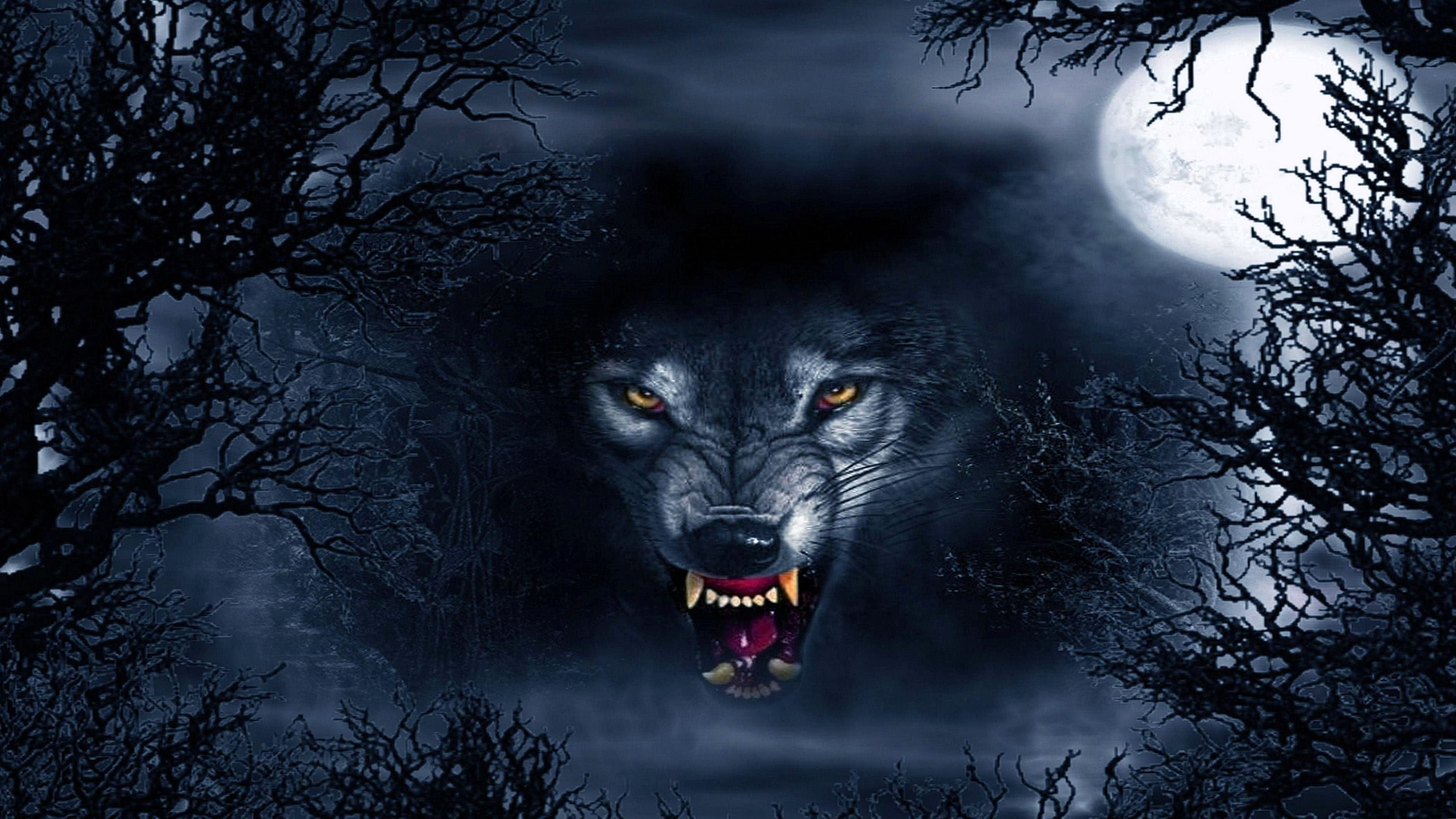 Scary Wolf Wallpaper HD