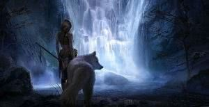 Girl With Wolf Wallpapers