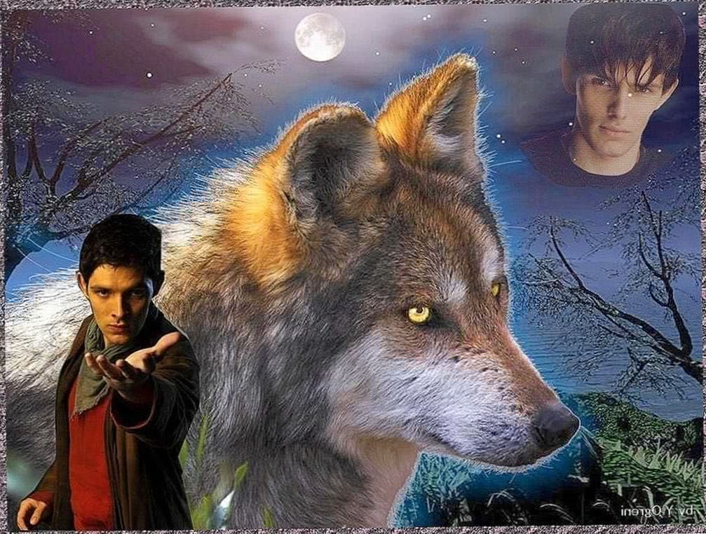 Fantasy Wolf Wallpapers Desktop