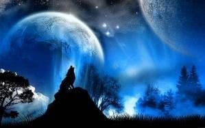 Fantasy Wallpapers Universe Wolf