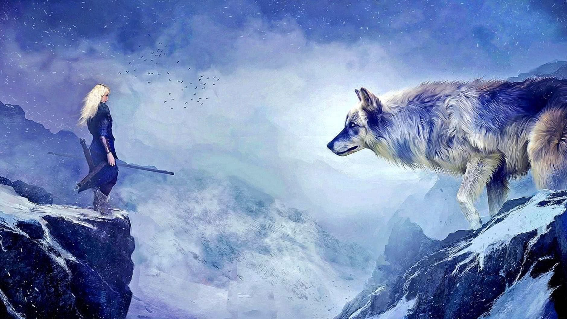 Warrior Wolf HD Wallpapers