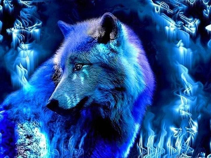 Wallpaper HD Ice Wolf