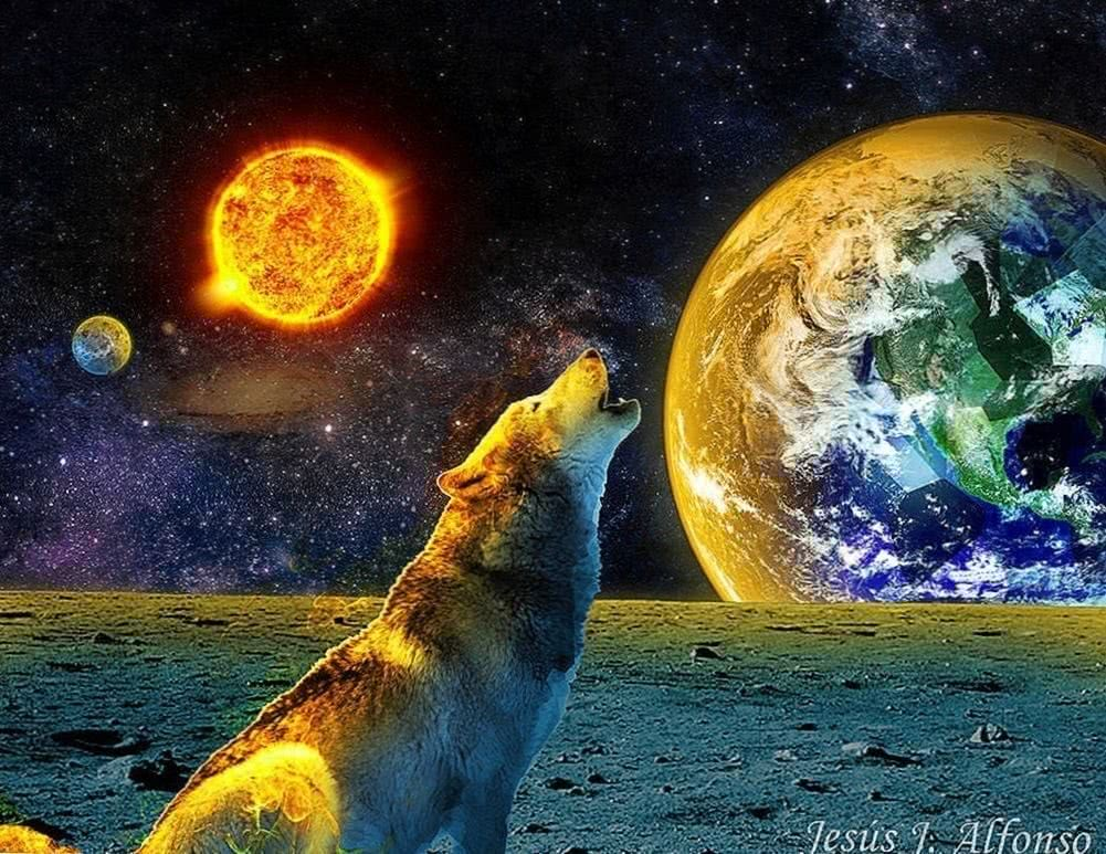 Wolf And The Ice Planet Wallpaper