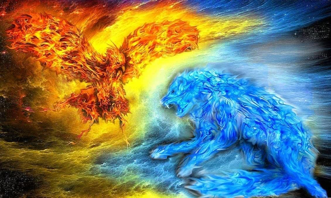 fire and ice wolf wallpaper wallpapersafari 29 wolf wallpapers.pro
