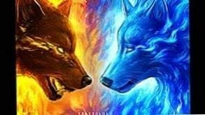 Ice And Fire Wolf Wallpapers