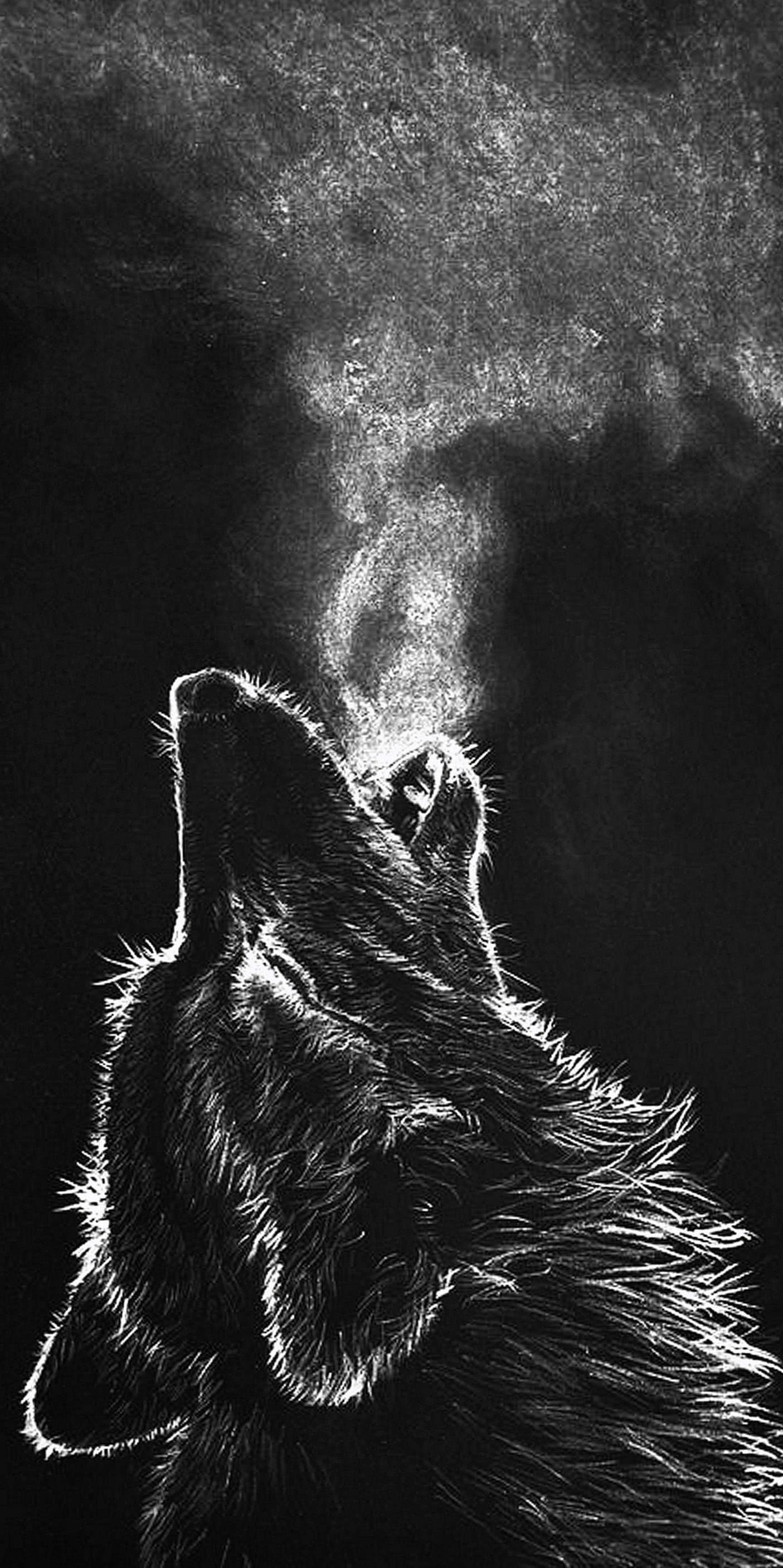 iPhone 8 Wallpaper Wolf