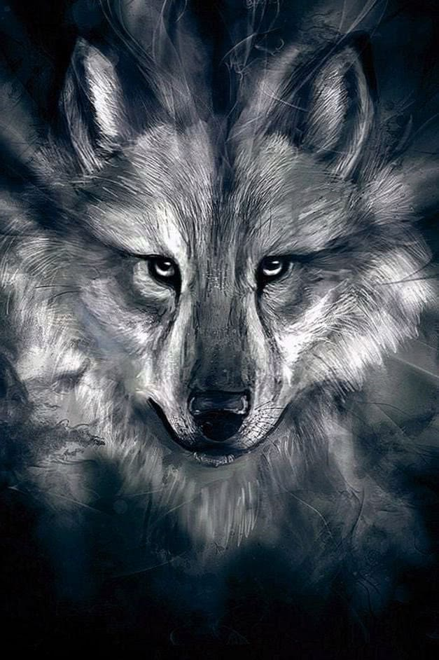 Wolf Wallpaper iPad HD
