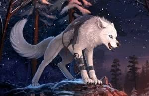 Wallpapers Furry Wolf