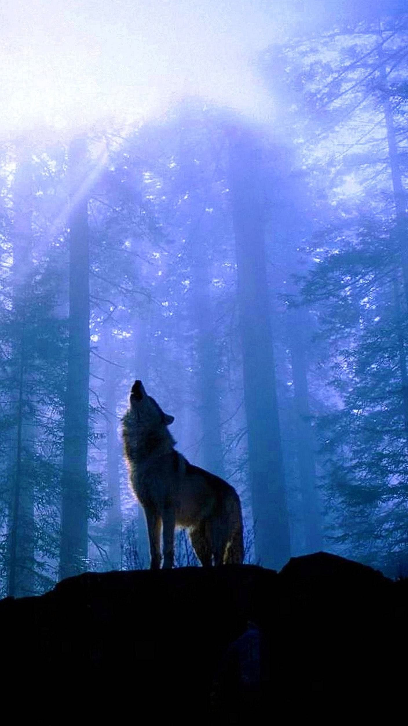 Wolf Wallpaper Lock