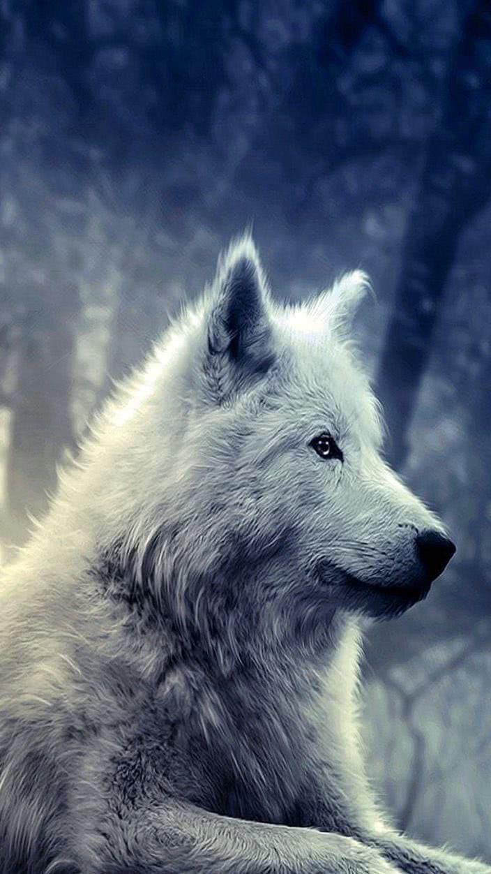 Wolves Wallpaper For Samsung