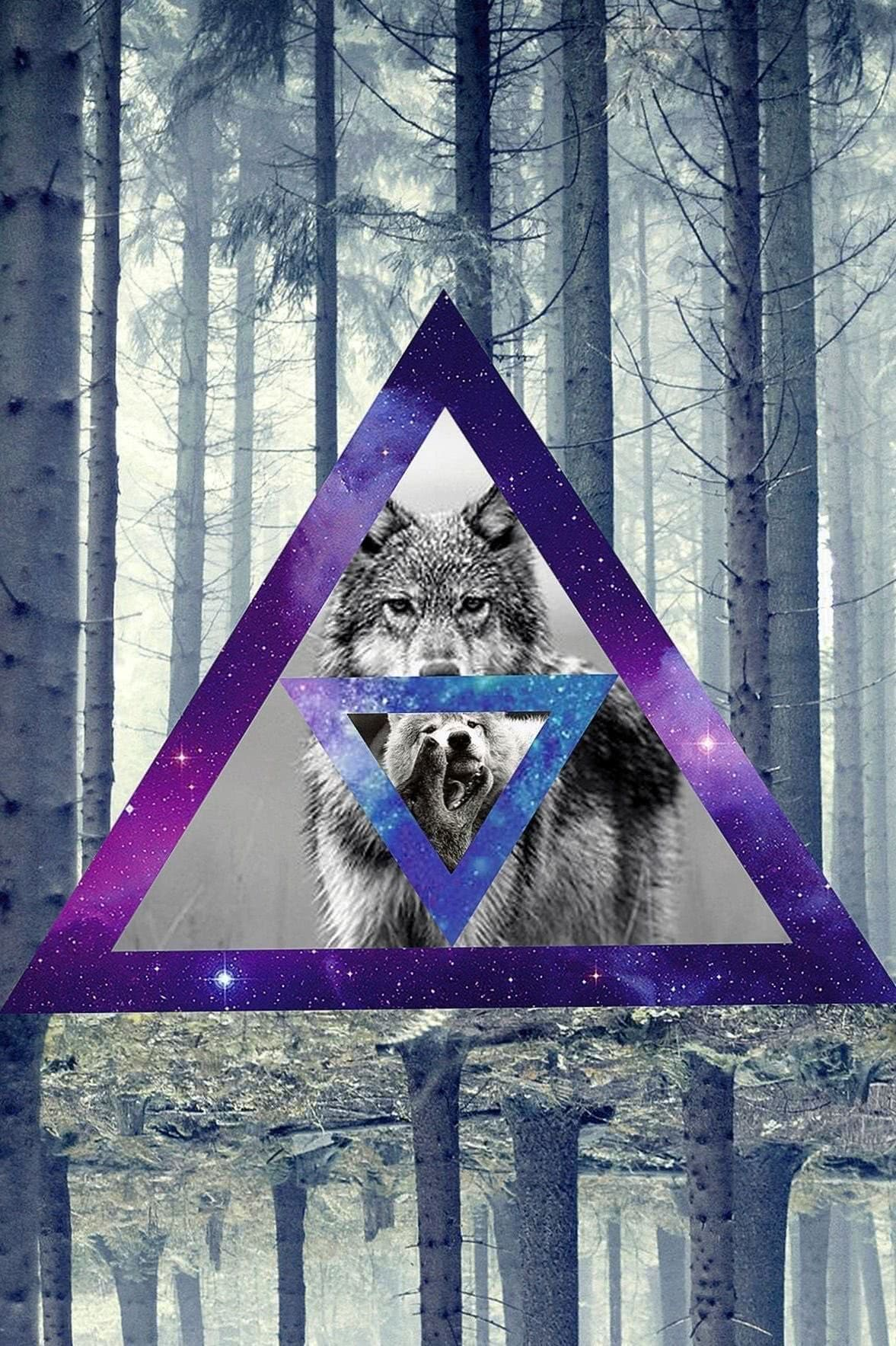 Galaxy Wallpapers Tumblr Triangle Wolf