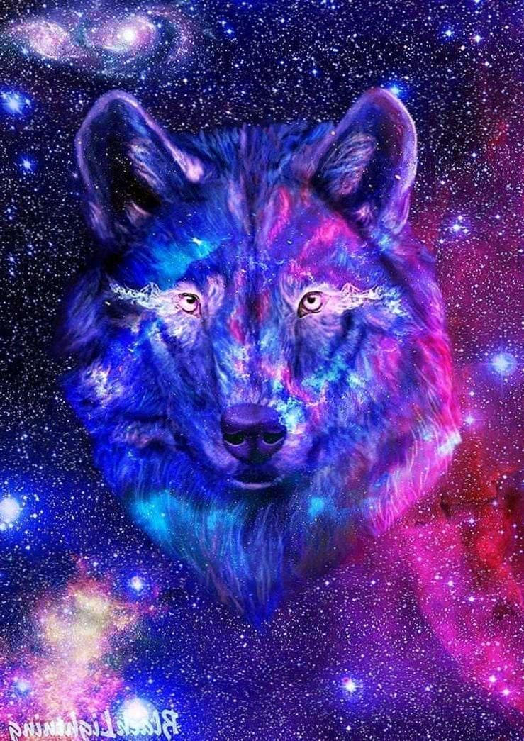 galaxy wolf wallpapers wallpaper cave 10 wolf wallpapers.pro