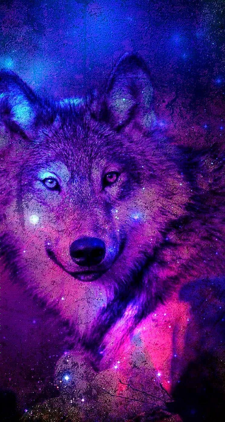 Galaxy Wolf Wallpapers Wolf Wallpapers Pro