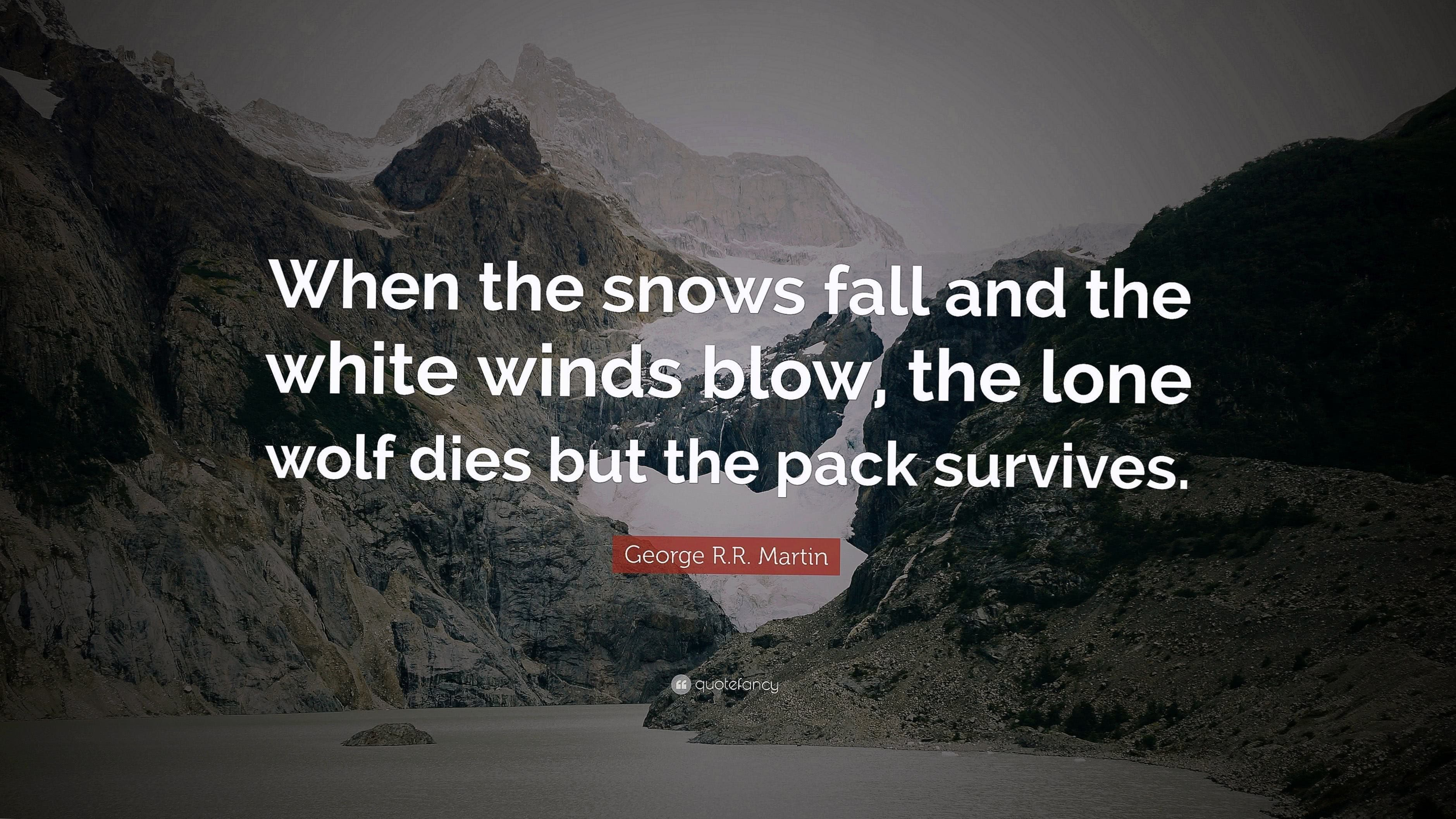 The Lone Wolf Dies But The Pack Survives Wallpaper