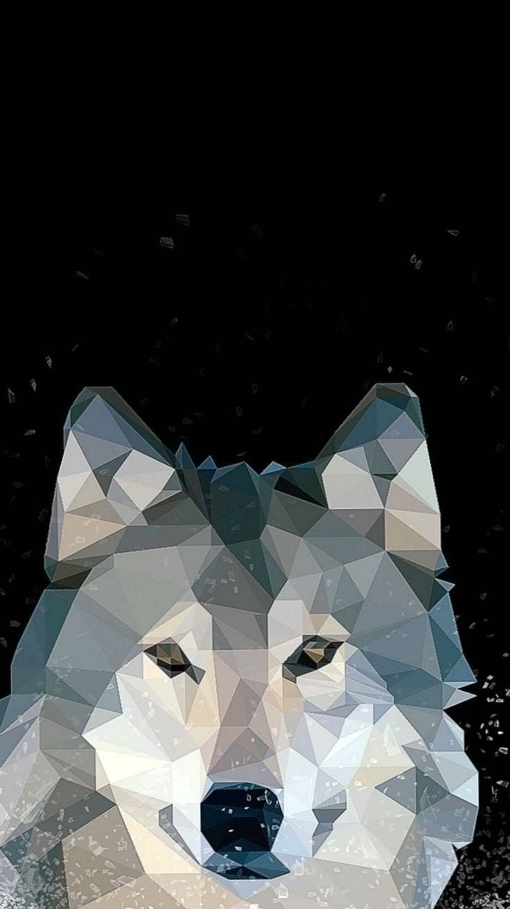 Grey Wolf iPhone 6 Wallpapers