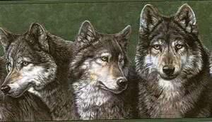 Wolf Wallpapers Border