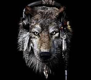 Wallpapers Dark Wolf HD