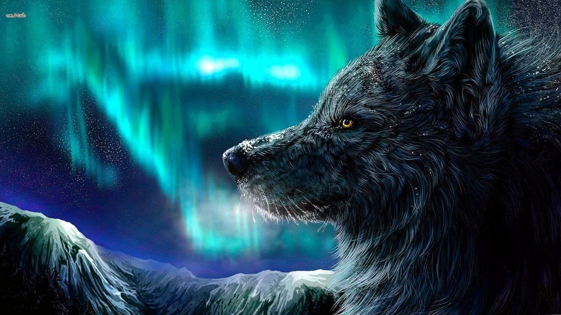 Anime Wolf Wallpapers 1920×1080