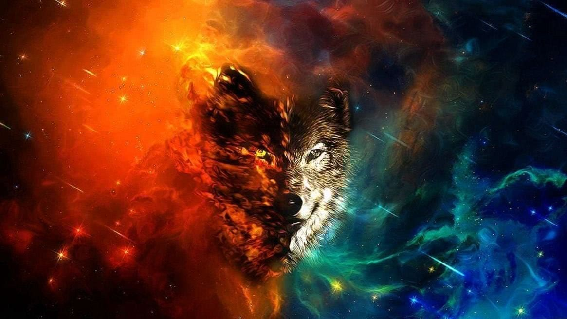 Wolf Painting HD Wallpapers