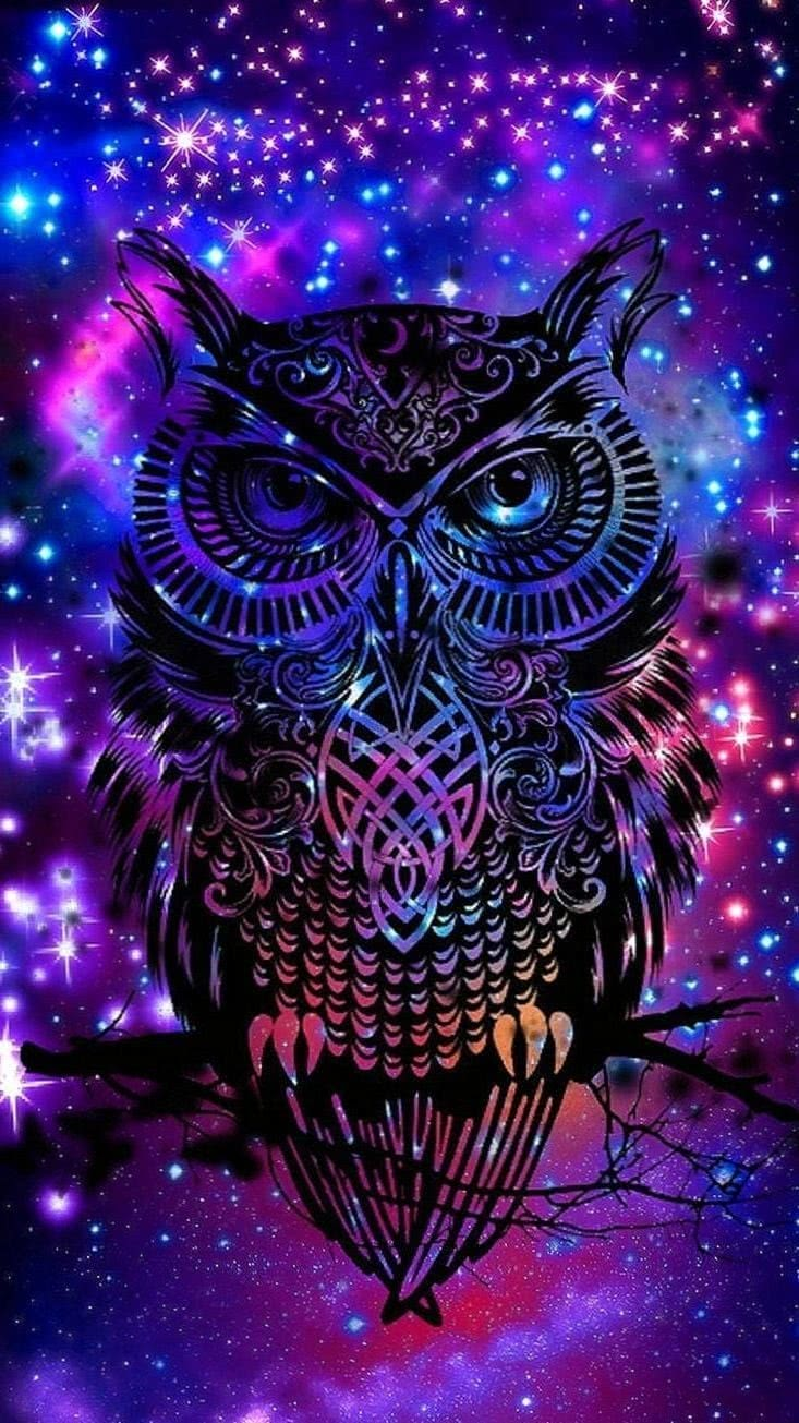 hipster wallpapers in 2019 screen wallpaper owl wolf wallpapers.pro