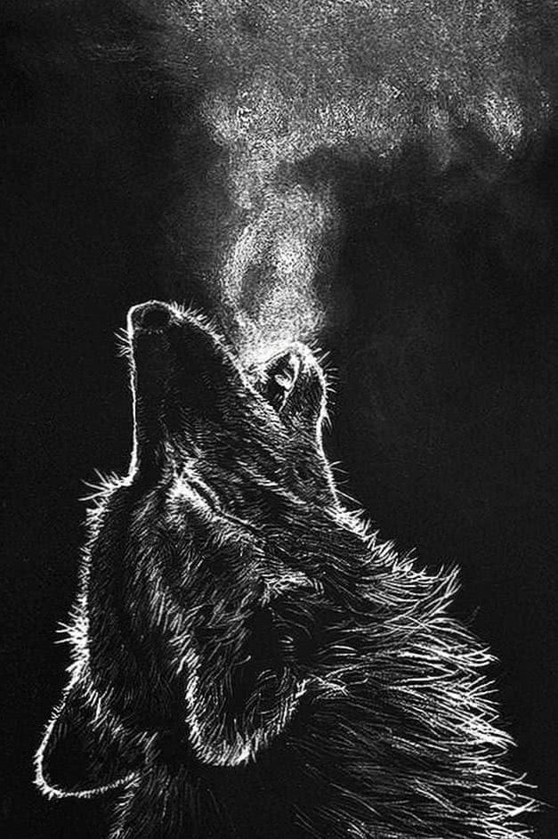 Phone Wallpaper Dark Wolf